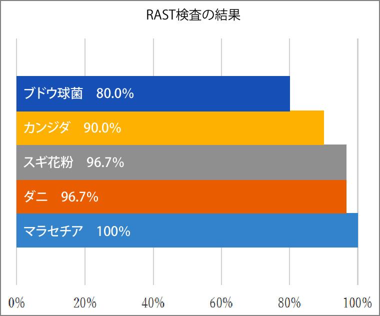 RAST検査の結果